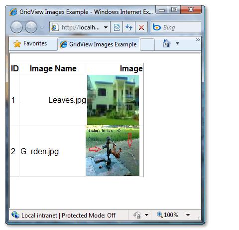 Image Zoom or enlarge using ASP Net GridView control   ASP